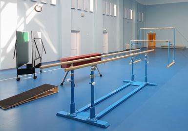 Новые стандарты к гимнастическому оборудованию утверждены Росстандартом